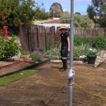 Bunbury backyard with rotary hoed Mumby Magic into exisitng grey sand September 2010