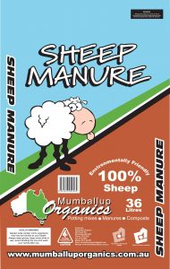 SHEEP-MANURE